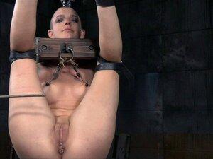 Die Glatze Abigail Dupree wird während der BDSM-Session in den Arsch gefistet und gespielt
